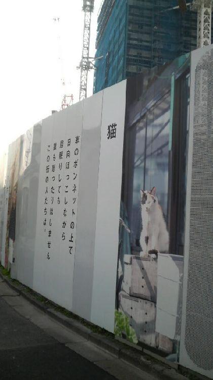 080114kakoi.jpg